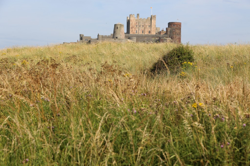 Bamburgh castle alone
